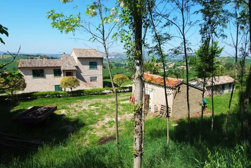 Farmhouse with Sea View, 4, 5 ha of Organic olive grove for sale in Recanati