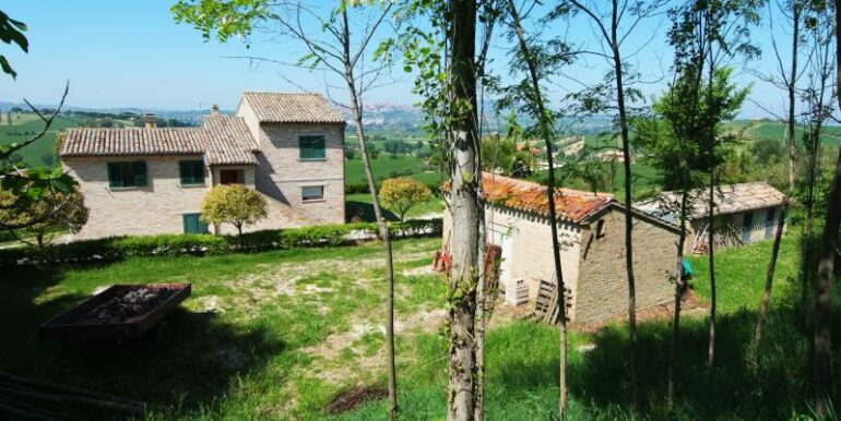 Casale abitabile con 4.5 ha di terreno con uliveto biologico certificato