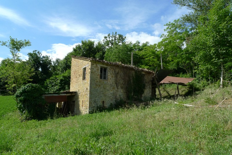 Farmhouse with small house and 3 ha of land in Penna San Giovanni