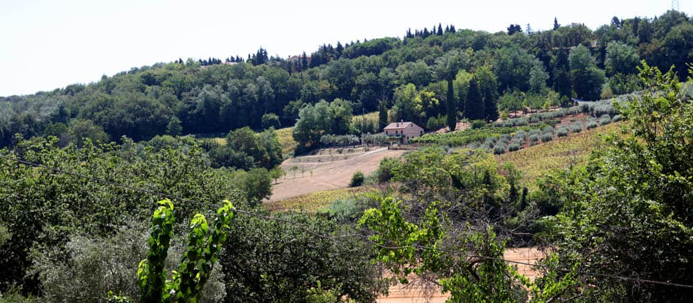 Restored Farmhouse for sale in Le Marche, just 10 minutes from the beach!