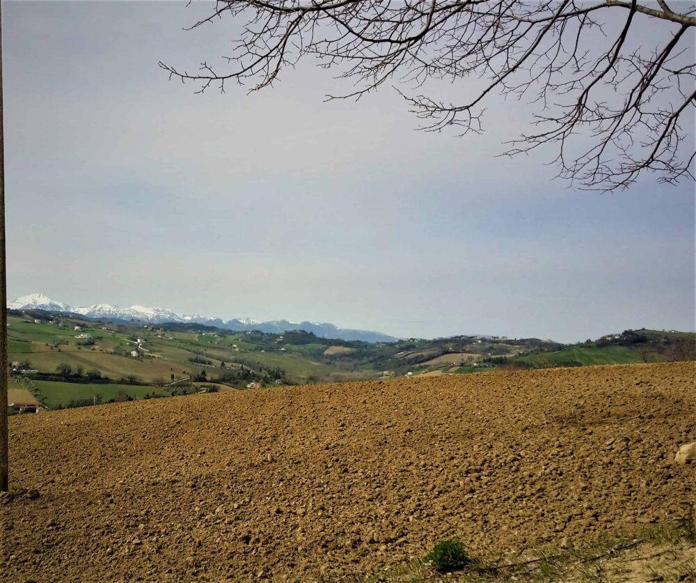 Azienda agricola con casa, accessori e 8 ettari di terreno