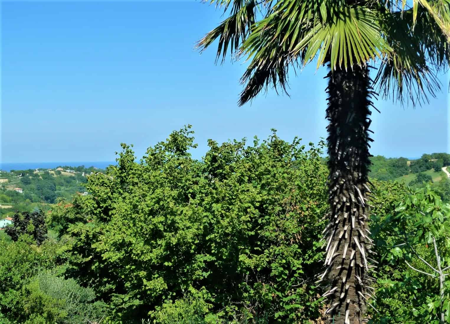Habitable villa just 5 minutes from the centre and 10 minutes from the beach