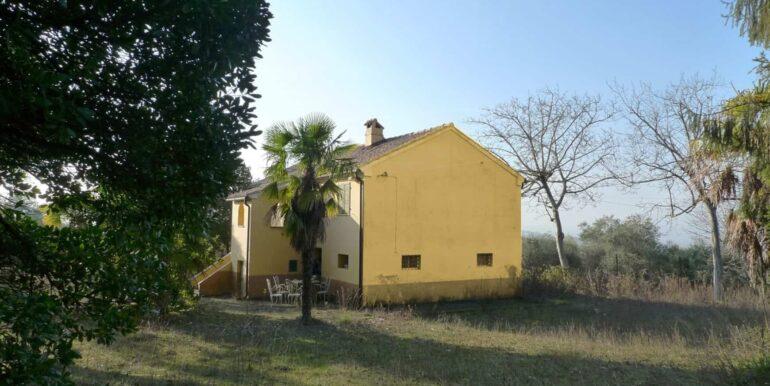 Casolare-con-uliveto-e-annesso-11-1740x960-c-center