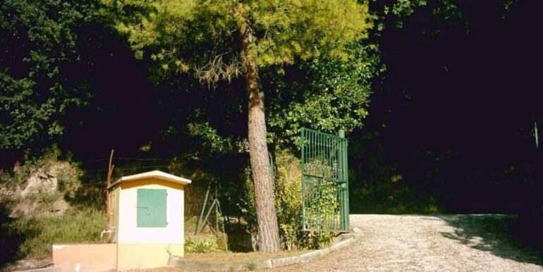 Casolare-con-uliveto-e-annesso-2-1740x960-c-center
