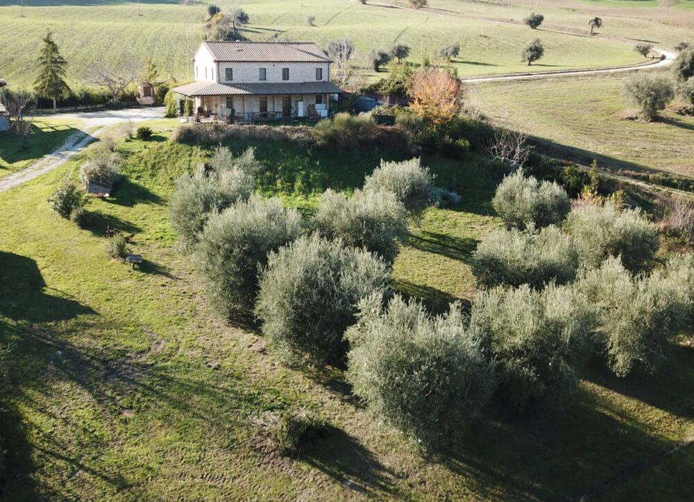 Agriturismo with rooms, restaurant and land