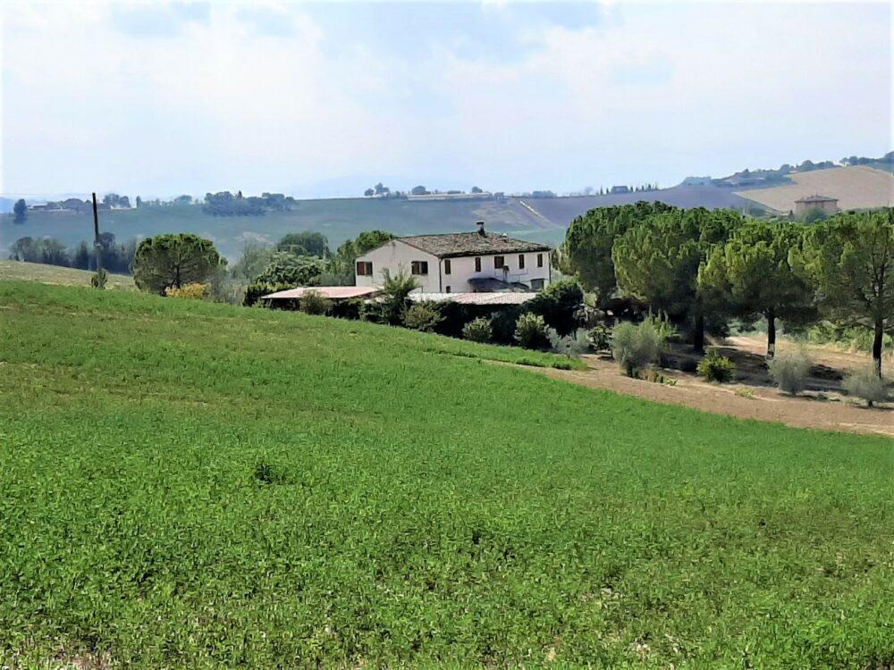 Farmhouse with land near Fermo