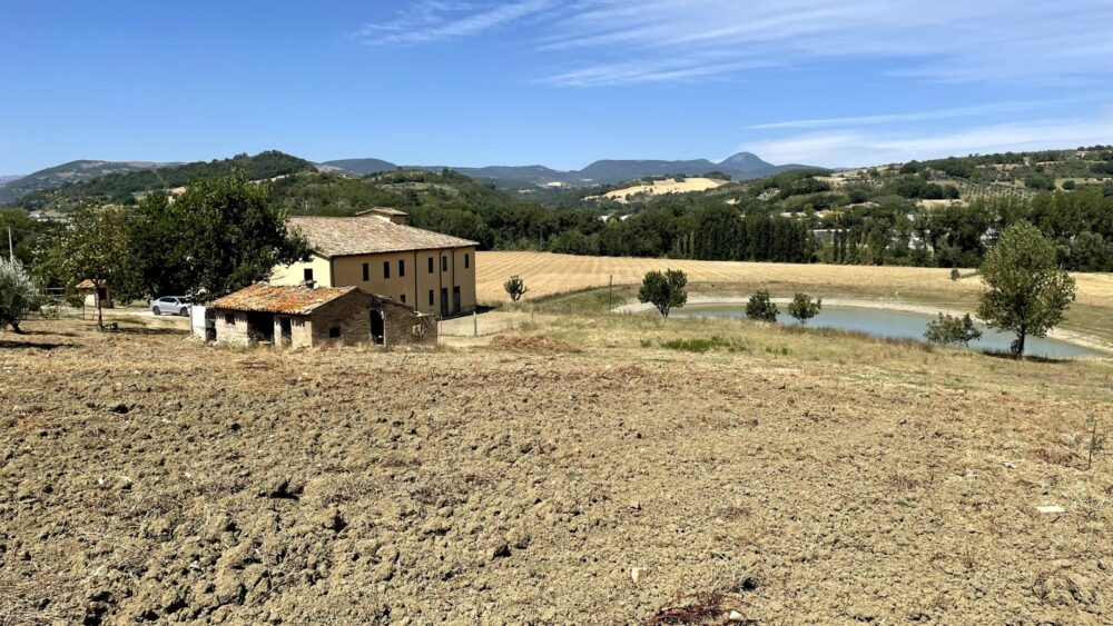 Large property with farmhouse and annexes of about 1000 sqm
